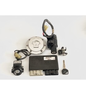 KIT COMPLETE CBR 954 ANO 2002 - 2003 USED